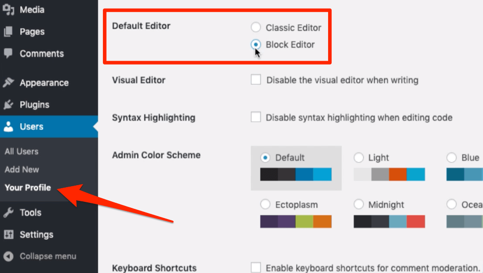 Default Editor in WordPress Users Profile