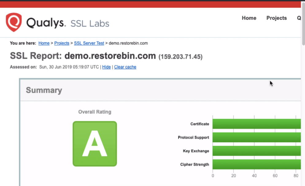 SSLLabs Test Report for domain