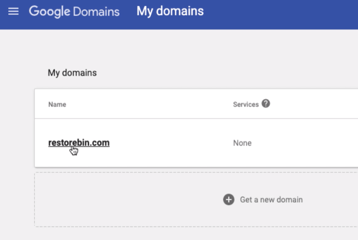 Select Domain Name in Google Domains