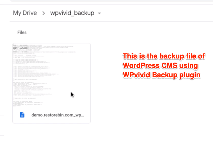 WPvivid backup in Google Drive