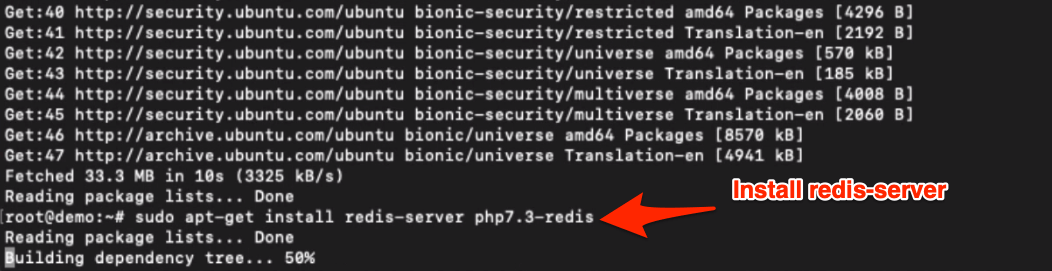 install redis sever and php7.3-fpm on Ubuntu